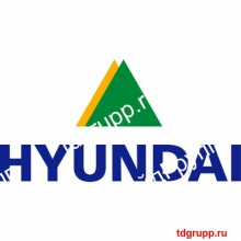 31ND-50020 Гидроцилиндр стрелы (правый) Hyundai R800LC-7A