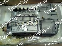 612601080457 Топливный насос Shaanxi WP10