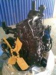 Двигатель Д243-648