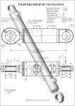 Гидроцилиндр стрелы цг-110х70х1100.11 ек-14